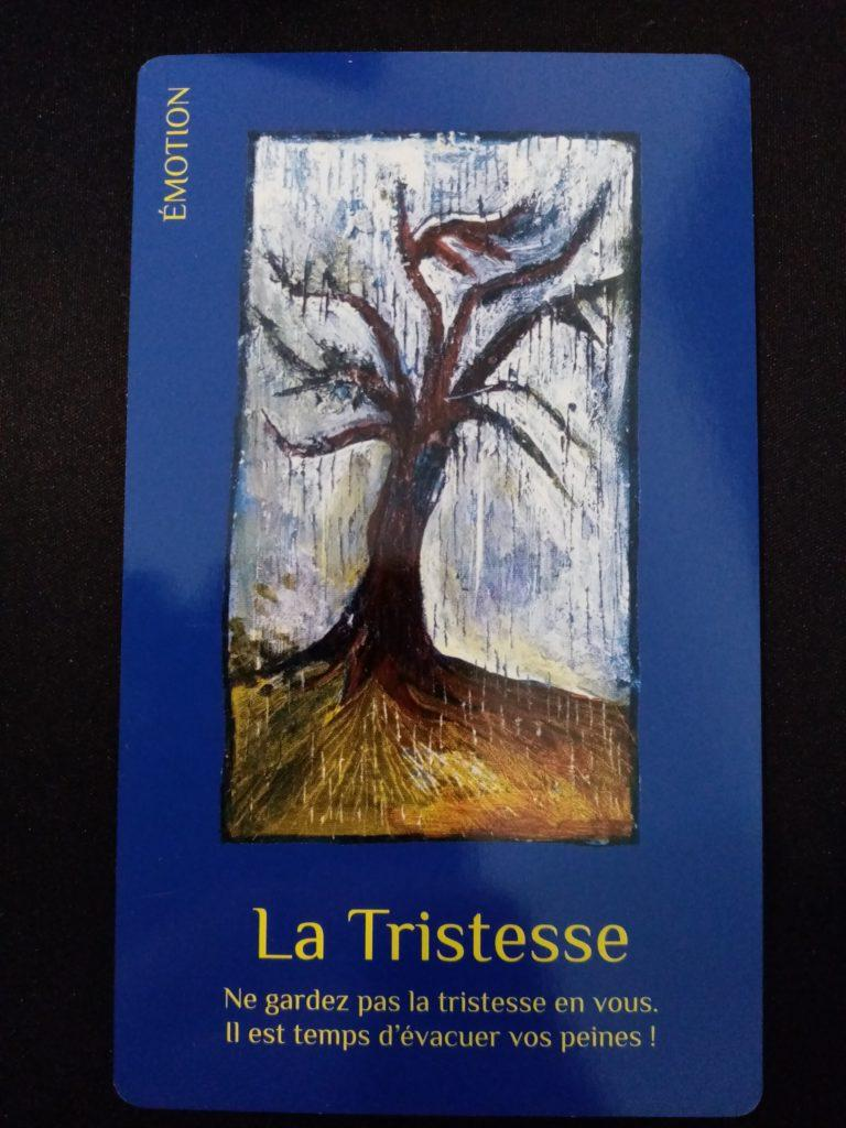 """La Tristesse du jeu de carte """"les cartes de lumière"""" de Lise Bartoli"""
